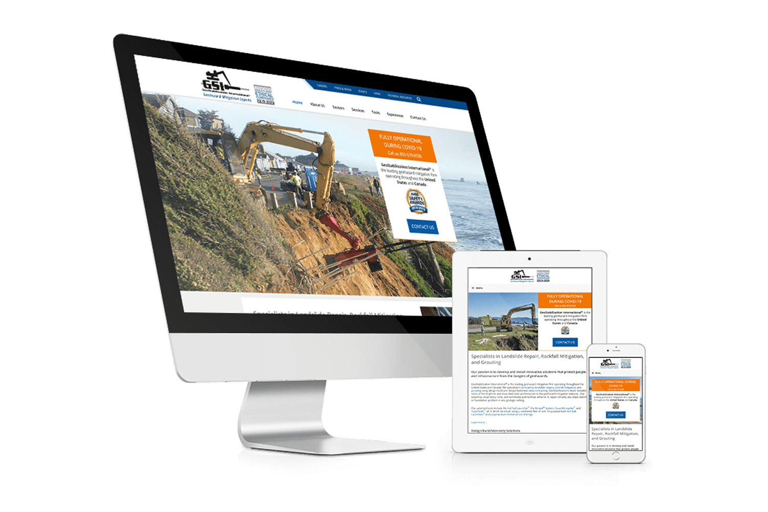 GeoStabilization International Website Design